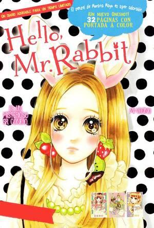 Hello, Mr. Rabbit