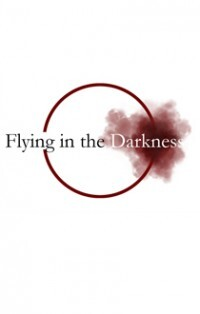 Flying In The Darkness