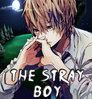 The Stray Boy